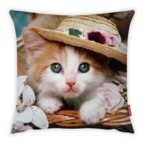 Obliečka na vankúš Vitaus Cute Kitten, 43×...