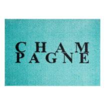 Modrá rohožka Mint Rugs StateMat Champagne, 50 × 75 cm