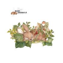 Nástenná samolepka Dekornik My Little Wild Rabbit, 100 x 57 cm