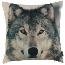 Obliečka na vankúš Apolena Wolf, 43×43 cm