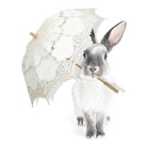 Nástenná samolepka Dekornik Harry Is Singing In The Rain, 90 x 115 cm