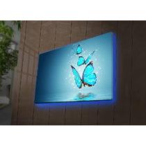 Podsvietený obraz Robin, 70×45 cm