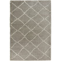 Sivo-krémový koberec Mint Rugs Allure Ronno Grey Creme, 120 x 170 cm