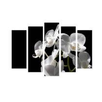 5-dielny obraz na plátne Orchid