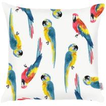 Obliečka na vankúš Apolena Parrots Pattern, 43×&...