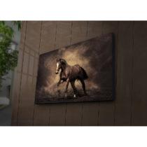 Podsvietený obraz Patrick, 70×45 cm