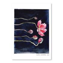 Plagát Blooms on Black III, 30×42 cm