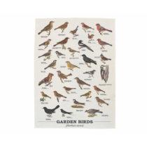 Utierka z bavlny Gift Republic Garden Birds, 50 x 70 cm