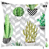 Obliečka na vankúš Apolena Zigzag Cactus, 43×&#x...