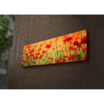Podsvietený obraz Sean, 90×30 cm
