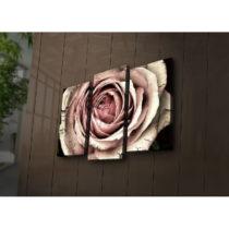 Podsvietený 3-dielny obraz Rose