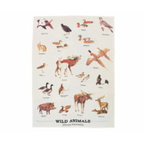 Utierka z bavlny Gift Republic Wild Animals Multi, 50 x 70 cm
