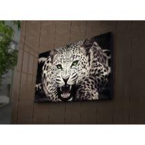 Podsvietený obraz Leo, 70×45 cm