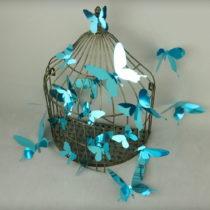 Sada 12 modrých adhezívnych 3D samolepiek Ambiance Butterflies