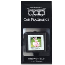 Vôňa do auta Bridgewater Candle, vôňa lesných plodov