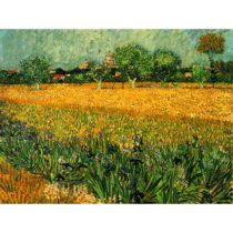 Reprodukcia obrazu Vincenta van Gogha - View of arles with irisos in the foreground, 40&am...
