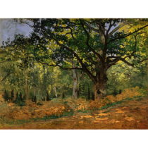 Reprodukcia obrazu Claude Monet - The Bodmer Oak, Fontainebleau Forest, 70 ×&#...