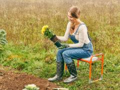 Záhradkárska stolička Topshop